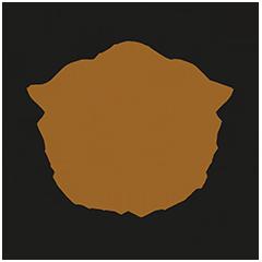 Kronohäktet Emblem