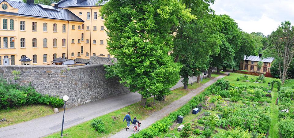 Parkmiljö på Långholmen